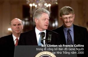 Collins-Clinton