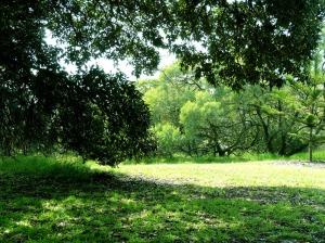 2.Park (3)
