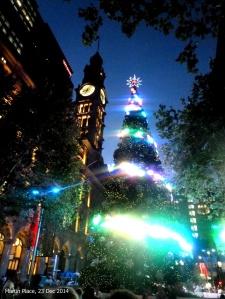 Sydney-NYE (36)