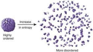 Entropy (3)
