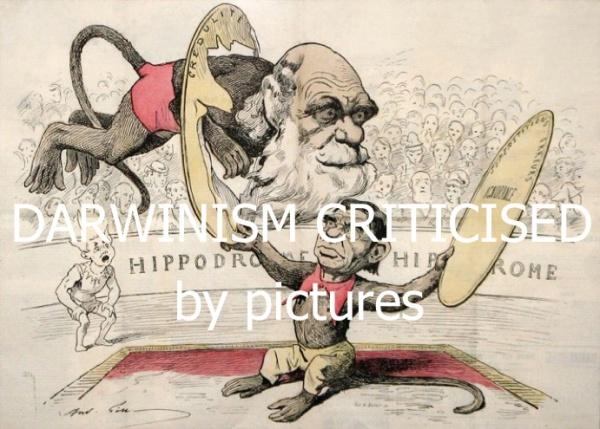 Darwinism (1)