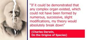 Darwinism (20)a