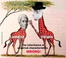 Darwinism (23)