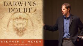 Darwin's doubt_Stephen Mayer