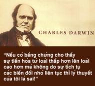 Darwin's-portrait-1