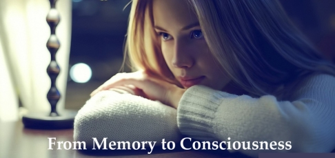 From Memory to Consciousness