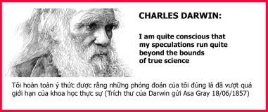Darwin's quotes (1)
