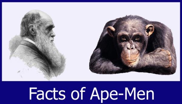 Darwin_Ape