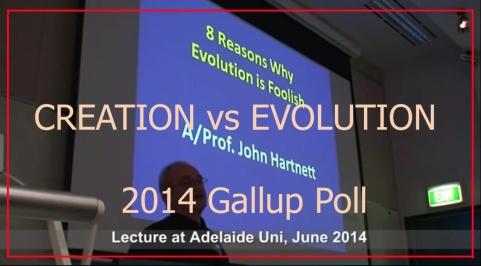 Gallup (1)