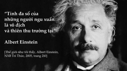 einstein-big-idea-merl-copy