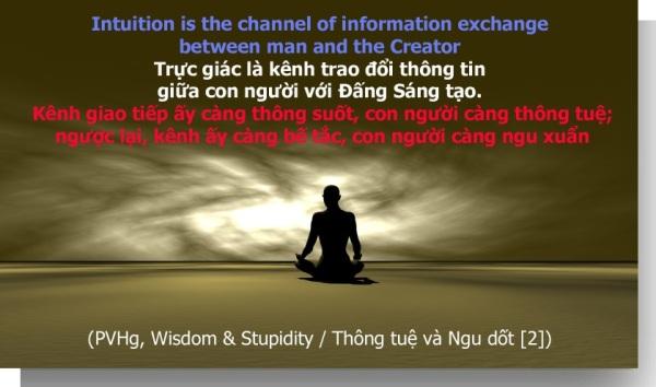 wisdom-stupidity-2-1