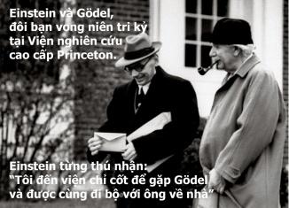 wisdom-stupidity-2-7