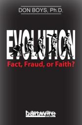 evolution-don-boys