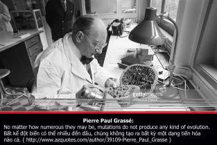 pierre-paul_grasse-2-copy