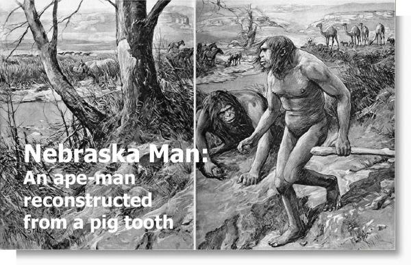 nebraska-man_1922-2